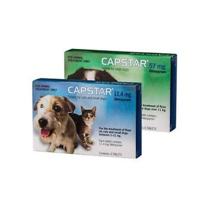 Capstar 6 Pack Flea Treatment