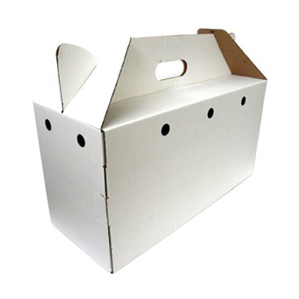 Pets Cardboard Carrier Box for Small Pets