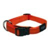 ROGZ Reflective Stitching Orange Dog Collar