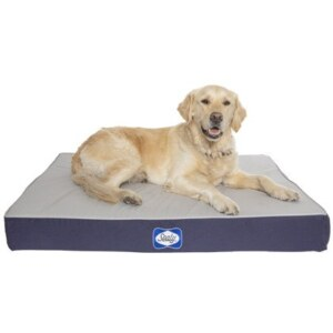 Sealy Defender Water Resistant Navy Dog Bed