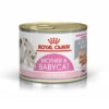 ROYAL CANIN Mother and Babycat Ultra Soft Mousse Wet Cat Food