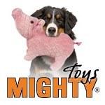 Mighty Toys Logo