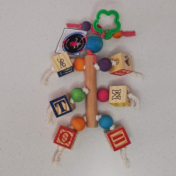 Rani Toys ABC Blocks Avian Parrot Toy