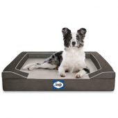 Sealy Lux Orthopedic Modern Grey Dog Beds